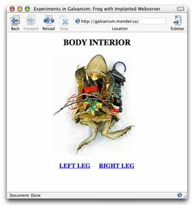 Frog with Implanted Webserver